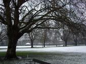 snowING 0208:1568752656.jpg