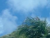 3.I (L) Guam day 4:1121076808.jpg