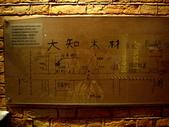 Science Museum-Natural History Museum:1199529800.jpg