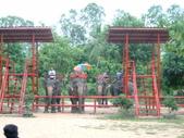 泰國初體驗畢旅篇9/3:1128050008.jpg