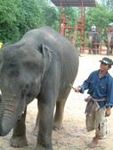 泰國初體驗畢旅篇9/3:1128050010.jpg