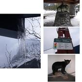 13-03-18(4)費爾德鎮-觀光局資訊中心:相簿封面