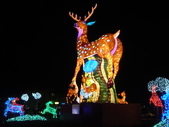 12-02-13(5)彰化-鹿港(2012年台灣燈會):燈會40副燈-展鹿頭角.JPG