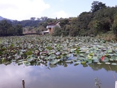 18-10-06(1)苗栗縣-南庄鄉-向天湖:南庄鄉2向天湖。海拔約738公尺相傳幾百年前,這裡原是湖泊,昔人因見湖仰望天空,從此便取名向天湖.jpg