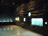 2008-6-20(1)嘉義市-東區(嘉義市立博物館):博物館18化石館.JPG