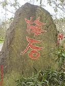 2008-1-1(2)南投-信義風櫃斗賞梅:信義風櫃斗13梅后.JPG