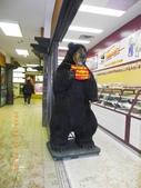 13-03-17(11)班夫小鎮:班夫小鎮8巧克店的大熊,後面也有一隻不用偽裝的大熊.JPG