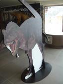 13-03-18(4)費爾德鎮-觀光局資訊中心:費爾德資訊中心13有恐龍展.JPG