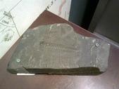 13-03-18(4)費爾德鎮-觀光局資訊中心:費爾德資訊中心14六億年前的三葉蟲化石展品.jpg