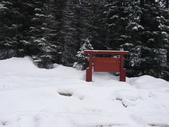 13-03-18(5)優鶴國家公園-翡翠湖和天然石橋和8字型螺旋鐵路隧道:翡翠湖1(Emerald Lake)冰川融雪形成的大湖,為優鶴國家公園內最大的湖泊,海拔為1302公尺.JPG