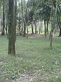 台大熱帶植物標本園和下坪:台大熱帶植物標本園內2鳥和攝影者.JPG