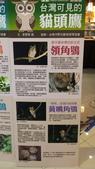 17-11-07南投縣-南投市-南投服務區(國道3號)(手機版):南投服務區1台灣可見的貓頭鷹介紹牌.jpg