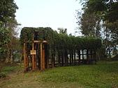 台大熱帶植物標本園和下坪:台大熱帶植物標本園內10.JPG