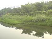 台大熱帶植物標本園和下坪:下坪5.J