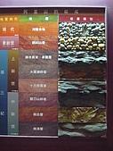 2008-6-20(1)嘉義市-東區(嘉義市立博物館):博物館16化石館.JPG