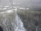 13-03-17(8)班夫國家公園-硫磺山纜車:硫磺山纜車9纜車內-終於敢回過頭,向下望,越來越高囉.JPG