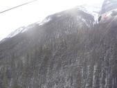 13-03-17(8)班夫國家公園-硫磺山纜車:硫磺山纜車10纜車內眺望.JPG