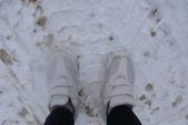 13-03-17(3)冰河國家公園-羅傑士峽道遊客中心:羅傑士峽道遊客中心1紀念第一次踩在正在下雪的雪地上.JPG