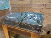 13-03-17(3)冰河國家公園-羅傑士峽道遊客中心:羅傑士峽道遊客中心3裡面的模型(羅傑士峽道Rogers Pass 是跨越哥倫比亞山脈的一個隘口,是BC 省最險峻的,可欣賞周圍