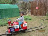 15-02-21竹山-竹屋部落(巨竹餐廳)(春節聚餐):竹屋部落(巨竹餐廳)1先坐小火車,一台一次20元.JPG