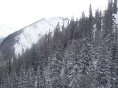 13-03-17(8)班夫國家公園-硫磺山纜車:硫磺山纜車17纜車內向旁望.JPG