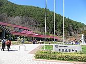 武陵農場--2011櫻花篇:武陵農場--櫻花篇 050.jpg