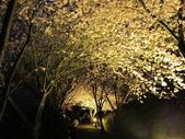 武陵農場--2012櫻來瘋篇:武陵農場2012櫻來瘋篇 130.jpg