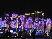 2016台灣燈會--桃園篇:台灣燈會--桃園 012.jpg
