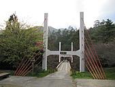武陵農場--2011櫻花篇:武陵農場--櫻花篇 142.jpg