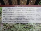 武陵農場--2012櫻來瘋篇:武陵農場2012櫻來瘋篇 044.jpg