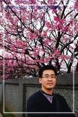 ❤海粼光❤:陽明山平菁街