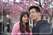 ❤同心圓❤:陽明山平菁街