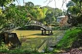 中興大學新化國家植物園 (2018-01-15):DSC_5182.JPG