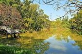 中興大學新化國家植物園 (2018-01-15):DSC_5188-DSC_5184-1.JPG