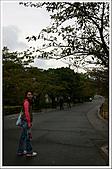 日本關西腿殘驚魂之旅-Day2:DSC04847_18.jpg