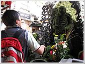 日本關西腿殘驚魂之旅-Day7:IMG_1206_30.jpg
