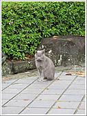 日本關西腿殘驚魂之旅-Day2:IMG_0191_54.jpg