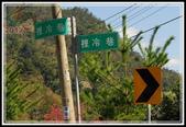 谷關七雄‧唐麻丹山:20120212_唐麻丹山 (55).JPG