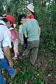 鷂婆山探險日記:翻找螞蝗