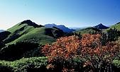 百岳-能高主峰:奇萊南峰看能高群峰a