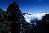 百岳-能高主峰:能高主峰下雲海
