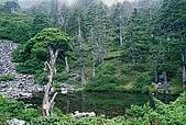 百岳-雪山:雪山主峰下寧靜萃池