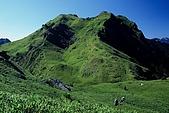 百岳-能高主峰:能高_卡賀爾峰