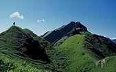 百岳-能高主峰:能高山途中