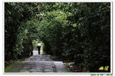 仁山植物園:10012幽徑.JPG