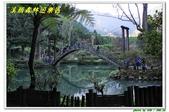 溪頭森林遊樂區:IMG_0450.JPG