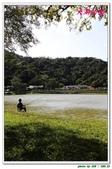 大湖公園:IMG_9085.JPG