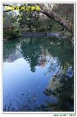 溪頭森林遊樂區:IMG_0466.JPG