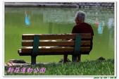新莊運動公園:IMG_6206.JPG