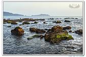 北海岸萬里野柳外拍10704:_MG_3513.jpg